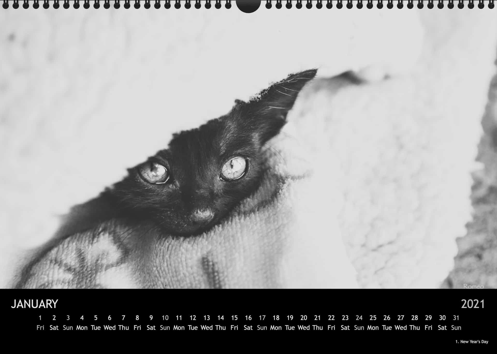 Calendar2021_01JanuarA3