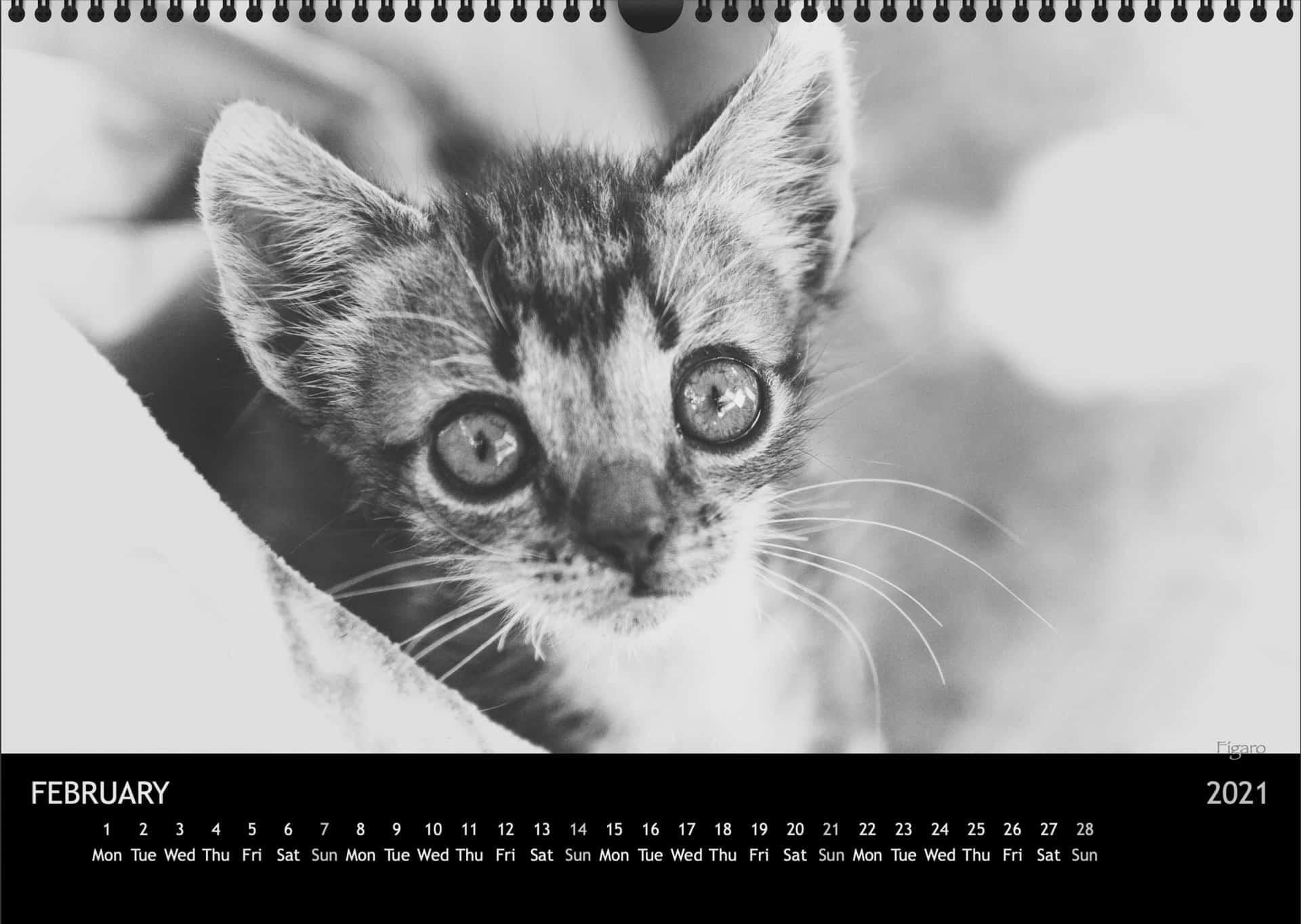 Calendar2021_02FebruarA3