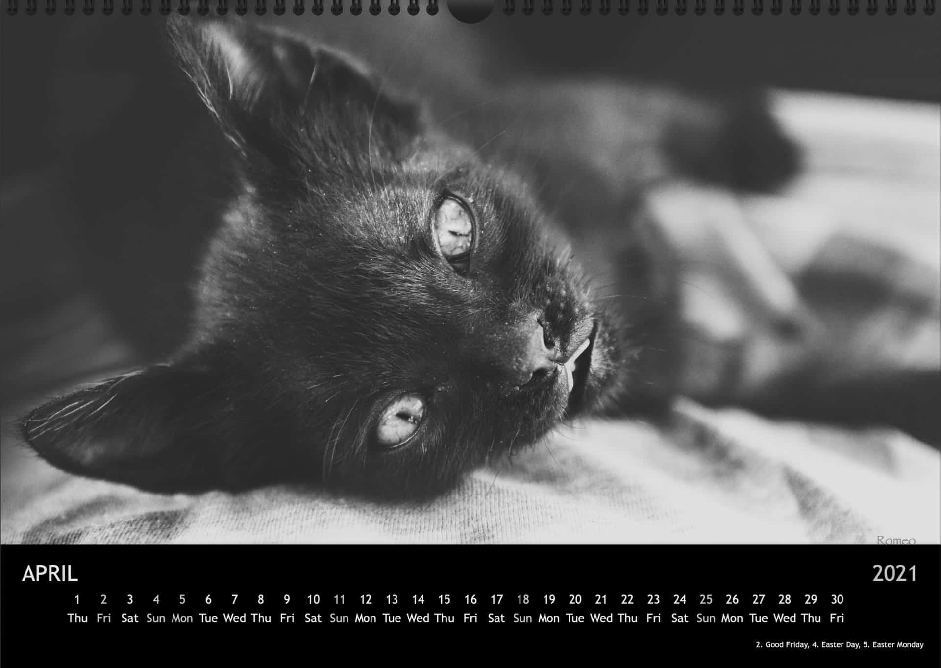 Calendar2021_04AprilA3