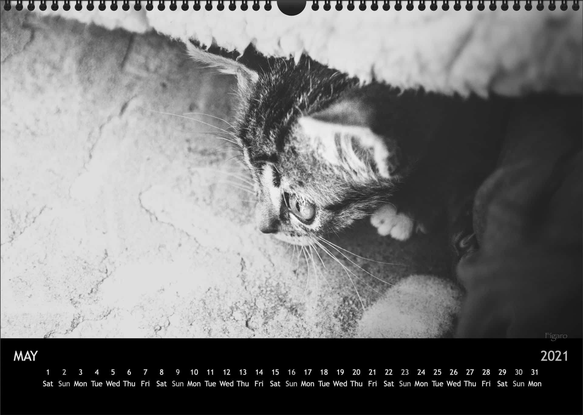 Calendar2021_05MaiA3