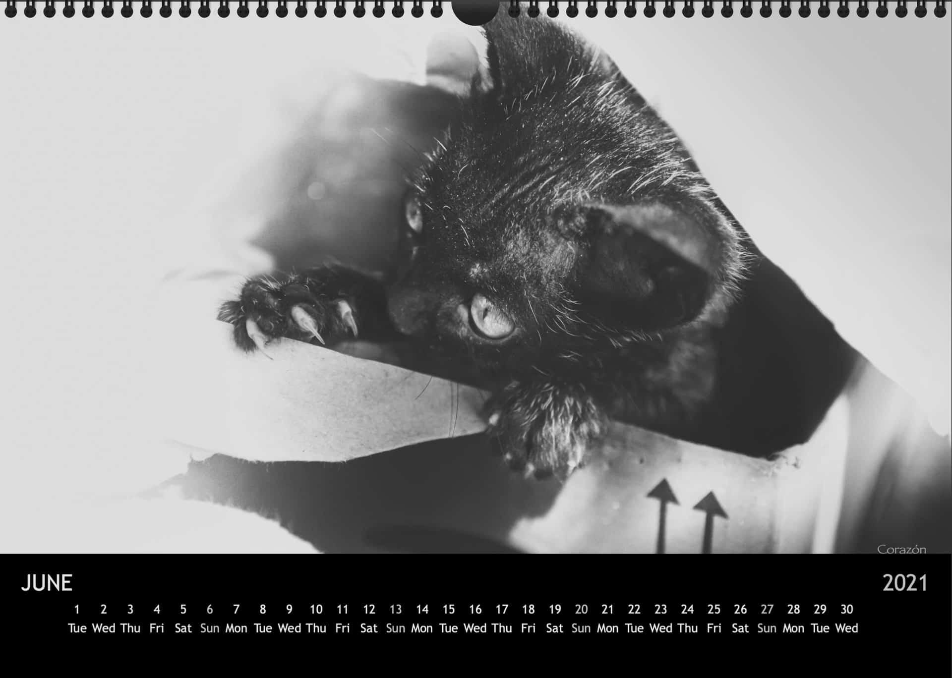 Calendar2021_06JuniA3