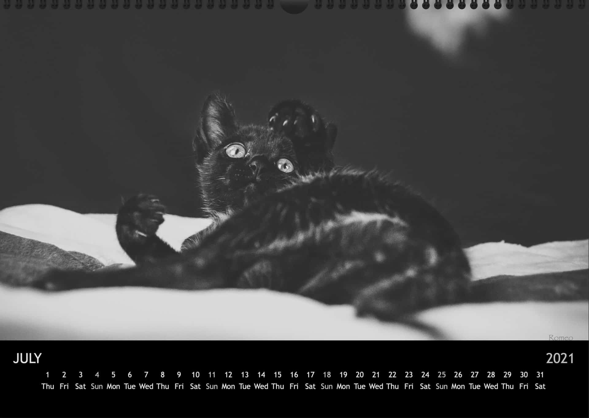 Calendar2021_07JuliA3