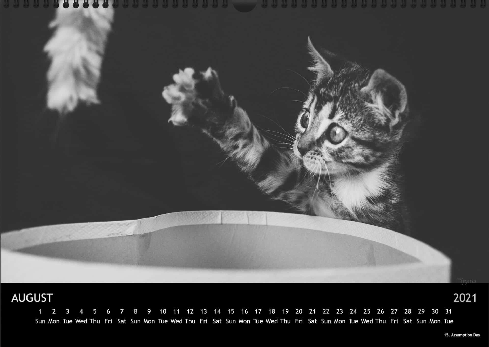 Calendar2021_08AugustA3
