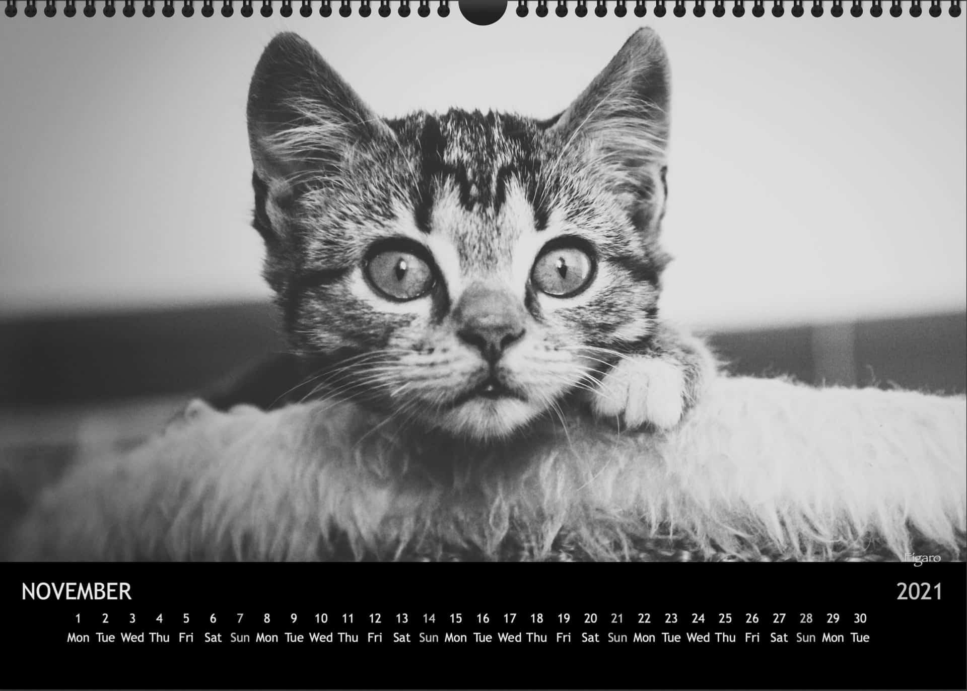 Calendar2021_11NovemberA3