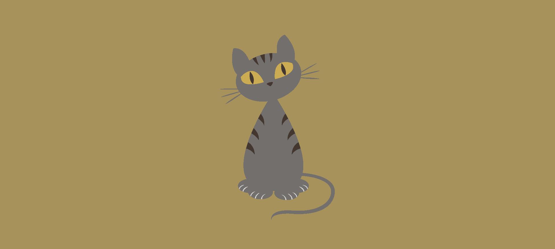 Katze Ronda Headerbild graphic